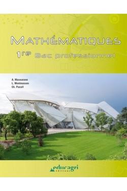 Mathématiques 1re BAC...