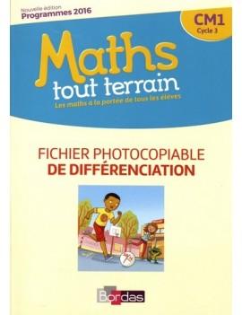 Maths tout terrain CM1 - Fichier photocopiable de différenciation