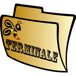 Lycée - Terminale