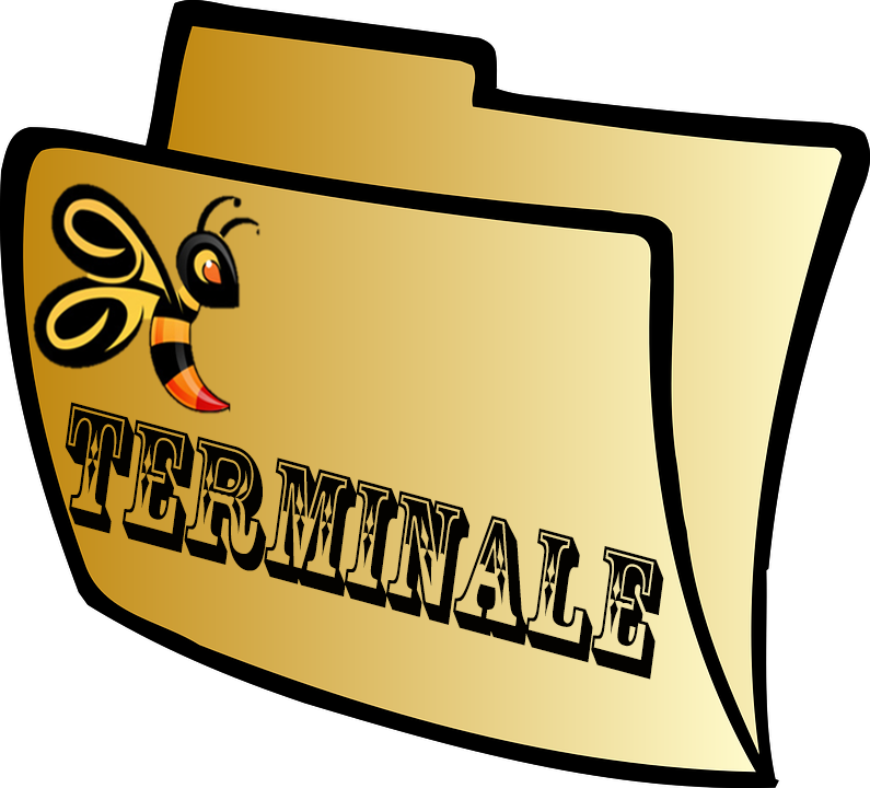 Terminale